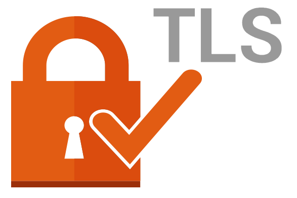 Transport Layer Security in REST Services